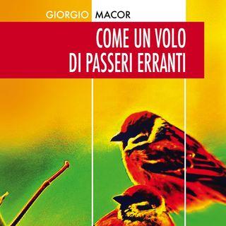 """Giorgio Macor """"Come un volo di passeri erranti"""""""