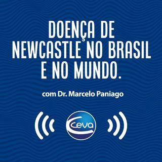 EP #5 - Doença de NewCastle no Brasil e no Mundo - PARTE 02