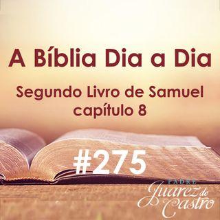 Curso Bíblico 275 - Segundo Livro Samuel 8 - As guerras de Davi - Padre Juarez de Castro