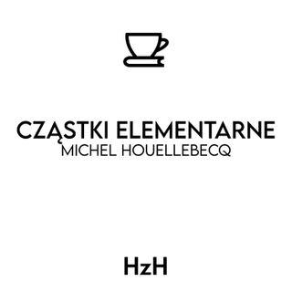 Michel Houellebecq: Cząstki Elementarne