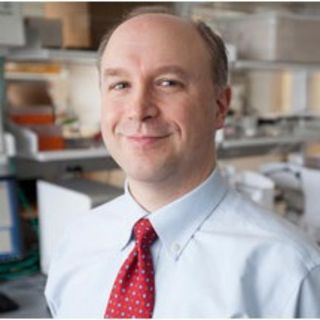 Engineering Complex Tissues in the Lab for Implantation in the Body—Dr. Lawrence Bonassar—The Bonassar Research Group