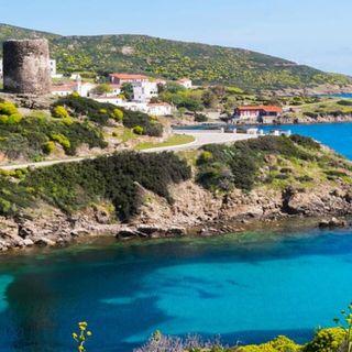 L'isola che è un parco nazionale: l' Asinara
