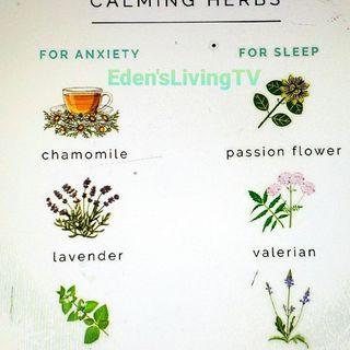 Calming HERBS FOR ANXIETY & SLEEP