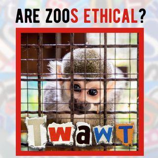 Should Zoos Exist?
