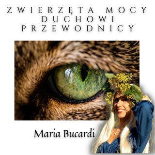 Zwierzęta Mocy- Duchowi Przewodnicy cz. I | Maria Bucardi