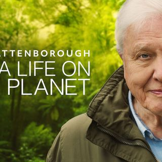 "Maria McCann reviews ""David Attenborough: A life on our Planet"""