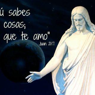 """Cuando no tenemos nada podemos decir al Señor """"tú lo sabes todo, tú sabes que te quiero"""" (3.6.17)"""