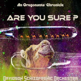 Are You Sure? - an Oregonauts' Chronicle -