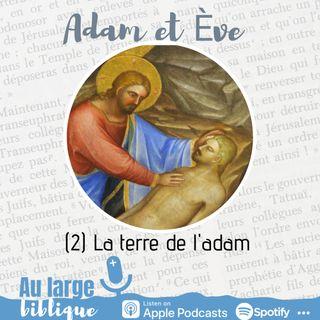 #197 Adam et Eve : à qui la faute ? (2) La terre de l'adam