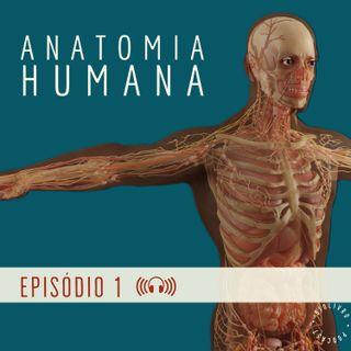 ANATOMIA: Introdução ao estudo da anatomia