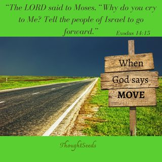 Episode 71: When God Asks You to Move
