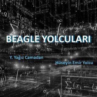 BEAGLE YOLCULARI II