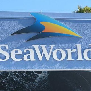 John Hargrove talks about his time at Sea World, Blackfish and his new book