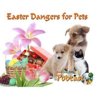 Easter Danger For Pets-Nadia Crighton