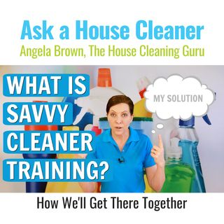 What is Savvy Cleaner Training? My Solution