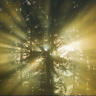 Conscious Living Radio Meditation VII