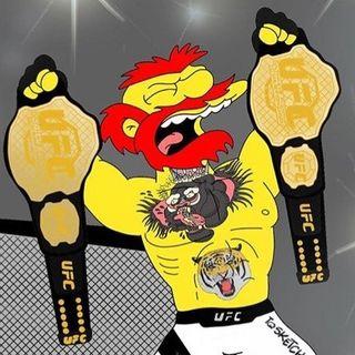 Conociendo un nuevo deporte: UFC