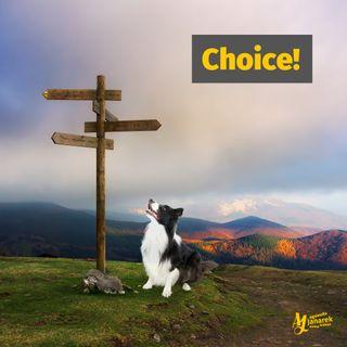 Episode 7: Choice!