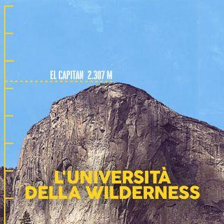 L'università della wilderness