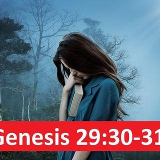 Genesis 29:30-31 Nagging Thoughts