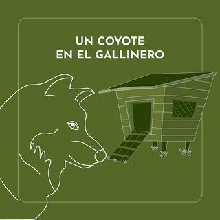Ep8 Un coyote en el gallinero
