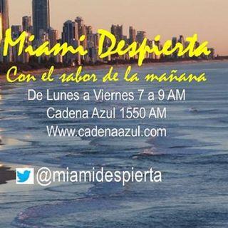 Miami Despierta Agosto 4 2014