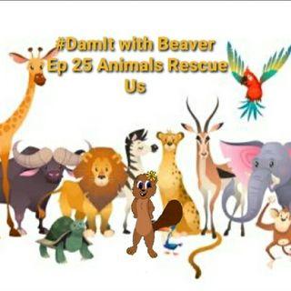 Ep 25 Animals Rescue Us