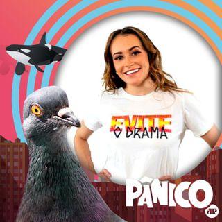 PÂNICO - 23/06/2021 - Fábio Güeré e Maga Lopes