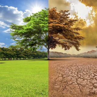 Capítulo 1. El cambio climático