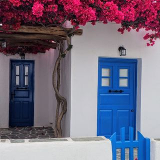 Kelley Casa Group | Real Estate | Behind the blue door