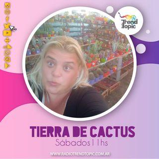 Tierra de Cactus