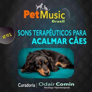 #01 Música para Acalmar seu Cão | Sons Terapêuticos