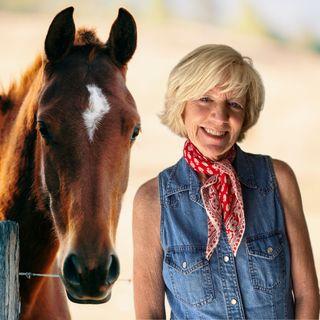 Equine Therapy with Paula Basden | Sacred Earth Life 08