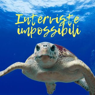 Intervista impossibile a una tartaruga marina, anzi due