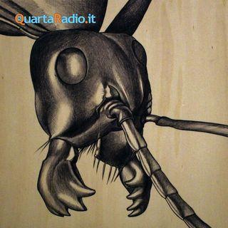 Vittoria delle formiche. Una novella di Luigi Pirandello