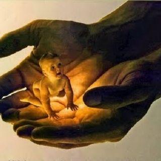 Adopción y Herencia