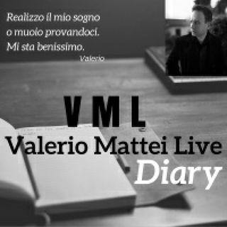 VML Diary #13