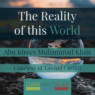 Abu Idrees Muhammad Khan - The Reality of this World
