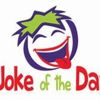 A Penguin Walks Into a Bar-Joke of the Day