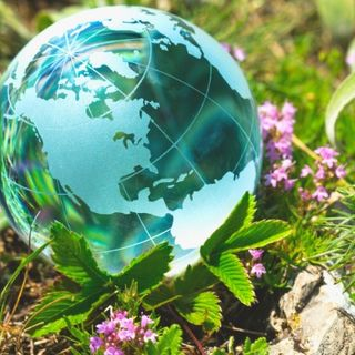 DIY GM Ep.76 – Earth Day: Awareness Through Your Garden