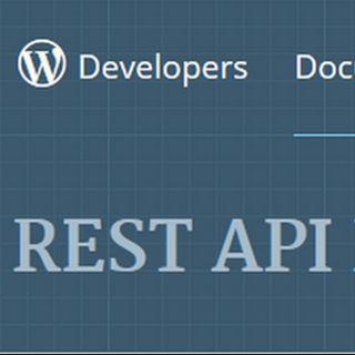Cosa sono i wordpress rest api