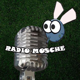 Radio Mosche - Puntata 3 - Perdo Anche l'Ultimo Podcast e Cerco di Riavvitarlo (Ultima Parte delle Origini)