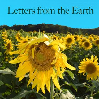 5 A Letter from the Earth about a Garden Party