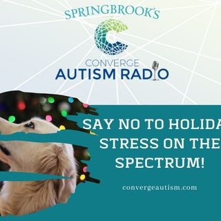 Say No to Holiday Stress On The Spectrum!