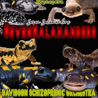 SevenSalamanders - Hypnopera -