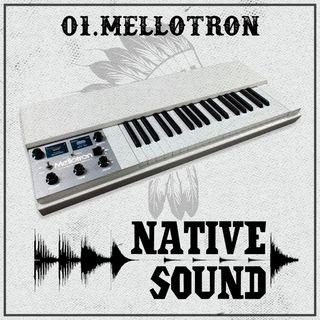 01. Il Mellotron