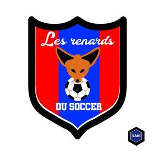 Renards du Soccer - S02E09 - Le Renard Bleu au Stade Saputo