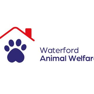 """Paw4Waw"" is an initiative that's raising money for Waterford Animal Welfare"