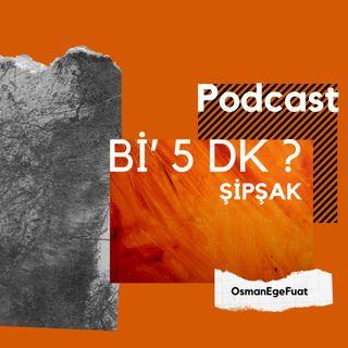 S1B6 - Şipşak