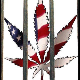 Medical Marijuana Radio - 02-21-17